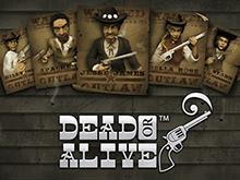 Dead Or Alive: играть в тестовом режиме